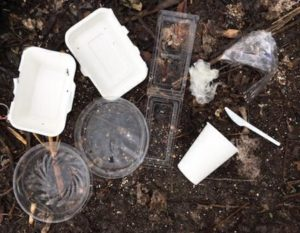 compostable products lying on soil before being composted