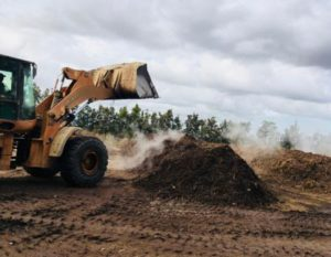 Steaming compost piles at Reliance farm