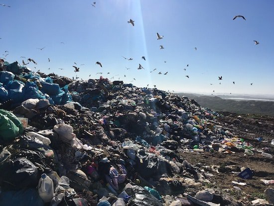 Piles of trash with birds flying above