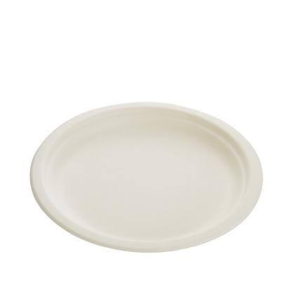 24cm Sugarcane Plate