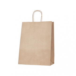 Thriftypak Kraft Gusseted Bag wth Paper Twist Handles