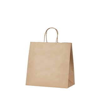 Picnic Pack Kraft Gussetted Bag with Paper Twist Handles